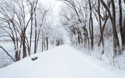 Surviving the Snow Without an Injured Back